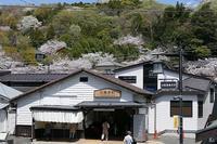 初めての富士登山(2007年) その14 - 季節(いま)を求めて