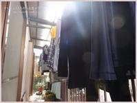 太陽の光で、お洗濯。 - かいじゅうたちのいる我が家。