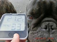 4月13日 7.13km - ちんたかたった~♪   feat.じゅっ