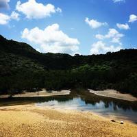 ナダラ川 - 西表島の石やんのあれやこれや