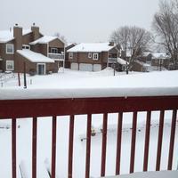Winter has completely over, I think - Casa de NOVA in Minnesota