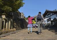 そうだ、奈良へ行こう - nyaokoさんちの家族時間