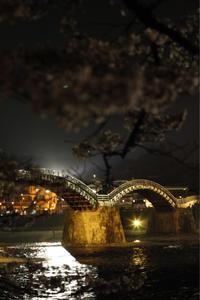 夜の錦帯橋 - 365日  Life