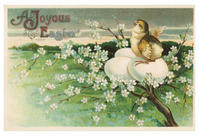 イースターヌーンサーヴィス2017  Easter noon service2017 - 大橋みゆき  音楽の花束をあなたに・・・