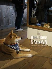 """Blue Blue NAGOYA""で影遊び♪ 【動画あり】 - yamatoのひとりごと"