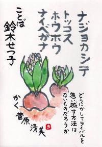 ヒヤシンス「ナジョカシテ」 - ムッチャンの絵手紙日記