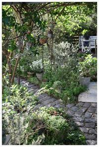 新緑と花たちに囲まれて・・・ - natu     * 素敵なナチュラルガーデンから~*     福岡県で庭の施工、外構造りをしてます