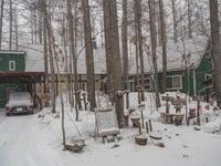 昨日の吹雪から一転・・今日はポカポカ春の陽気。 - 十勝・中札内村「森の中の日記」~café&宿カンタベリー~