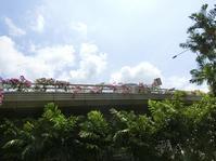 """Moc Quan でのんびり休日のブランチ ☆ ~ シンガポールもグッドフライデーで祝日 ~ - Singaporeグルメ☆"""" Ⅱ"""