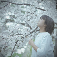 SAKURA 2017    9 - Through The Finder