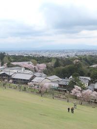 あるく奈良-36 [万葉の春] ② - 若草山 - - 続・感性の時代屋