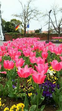 ハウステンボス①  ◆春の長崎の旅#4◆ - Emily  diary