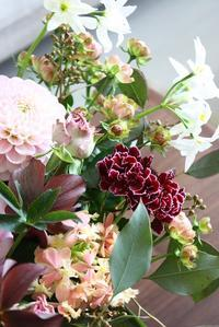 お祝いのお花達 - Rose ancient 神戸焼き菓子ギャラリー