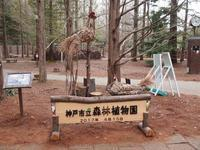 神戸市立森林植物園へ - ~Field Note~