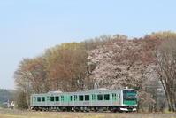 EV-E300【ACCUM】【桜】 - EH500_rail-photograph