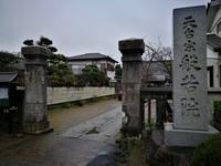 茨城の桜めぐり 般若院の枝垂れ桜 @茨城県 - 963-7837