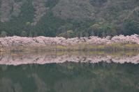 湖畔 - (=^・^=)の部屋 写真館