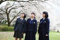 桜ロケーション - 酎ハイとわたし