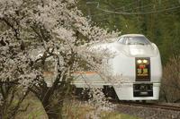 桜咲く沿線を行く列車たち - THE FL LENS WAKU WAKU Mark II