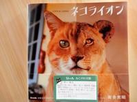 本で「植本祭」に参加、続々、セサミ香房のお菓子も到着 - ご機嫌元氣 猫の森公式ブログ