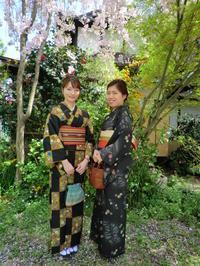 桜と新緑をバックに、お似合いのお着物姿で。 - 京都嵐山 着物レンタル&着付け「遊月」