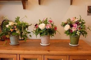 * 5月 flower room無農薬の薔薇を使ったアレンジメント作り * - la renoncule