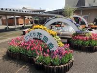 鳥取県立フラワ-パ-ク「とっとり花回廊」・・(1) - 本当に幸せなの?