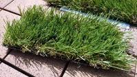 そしてリアル人工芝へ - ロサンゼルスMBA生活とその後