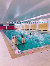 今年度初練習!! - 東北大学水泳同好会