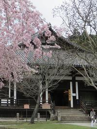 あるく奈良-37 [万葉の春] ③ - 二月堂周辺 - - 続・感性の時代屋