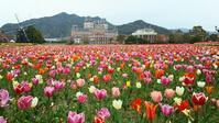 ハウステンボス② ◆春の長崎の旅#5◆ - Emily  diary