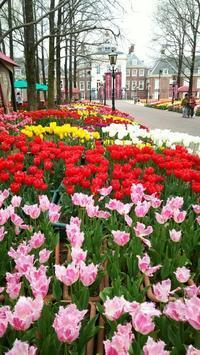 ハウステンボス④  ◆春の長崎の旅#7◆ - Emily  diary