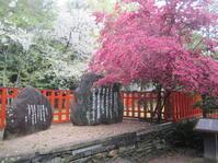 玉津島神社の春・衣通姫の歌 - 地図を楽しむ・古代史の謎
