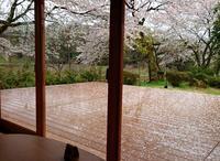 花弁につつまれて - 金沢犀川温泉 川端の湯宿「滝亭」BLOG