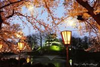 1/100万人 @高田公園 その2 - 木の葉のオト