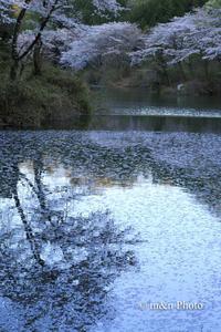 日暮れの湖畔 - 季節のおくりもの