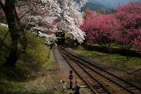 わたらせ渓谷鉄道・・・その1 - 四季の予感