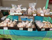 クラフト市に参加しました 【春市】 - 自家製酵母で楽しむ暮らし uipain ユイパン