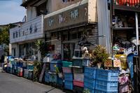 17さんぽ〜立石・カラフルリサイクル - 散歩と写真 Fotografia e Passeggiata
