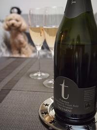 TALTARNI T-Series Sparkling - bistro le chien