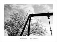 6丁目の公園 - Minnenfoto