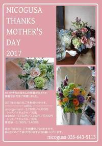 nicogusa THANKS MOTHER'S DAY 2017 - 花屋「ニコグサ」やってます。