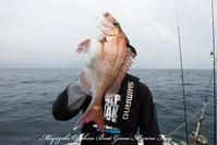 2017,04/15.16 鯛ラバ - 鯛ラバ遊漁船  Miyazaki Offshore Boat Game Marine Frog
