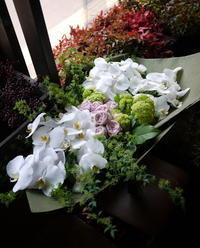 ご結婚のお祝い花束。「胡蝶蘭メインで」。南4西8にお届け。2017/04/15。 - 札幌 花屋 meLL flowers