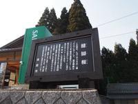 4/4 醍醐桜と尾道 - Dameba ~motorcycleでいろいろなところに出かけるブログ~