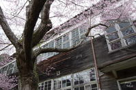 西吉野 曇っていて残念であったけれど - ぶらり記録(写真) 奈良・大阪・・・