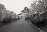 天守への道 - Life with Leica