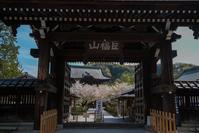 2017 山歩記・新緑の鎌倉アルプス、天園ハイキングコースと名刹巡り - ろーりんぐ ☆ らいふ