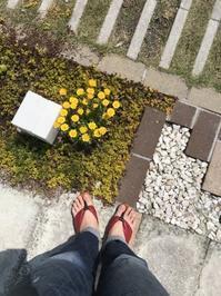スタッフスタイル @いぬと わたしの ことり市/エコフィールド - 下駄げたライフ