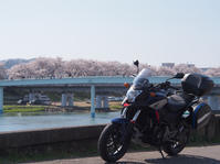 2017 船岡城址公園&白石川堤一目千本桜 花見ツーリング - 風とバイクと俺と。